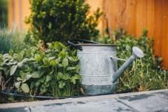 Zahradka-s-bylinkami-na-chate-Woodpark