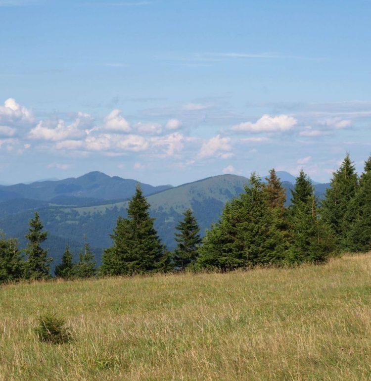 Výhľad na vrch Lysec z Tlstej
