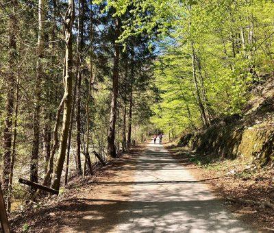 Cesta na Šútovský vodopád
