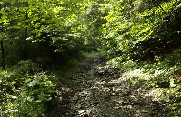 Cesta na Lysec