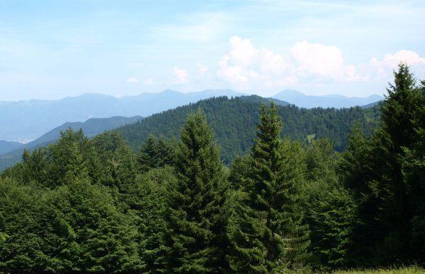 Výhľad z Gruňa